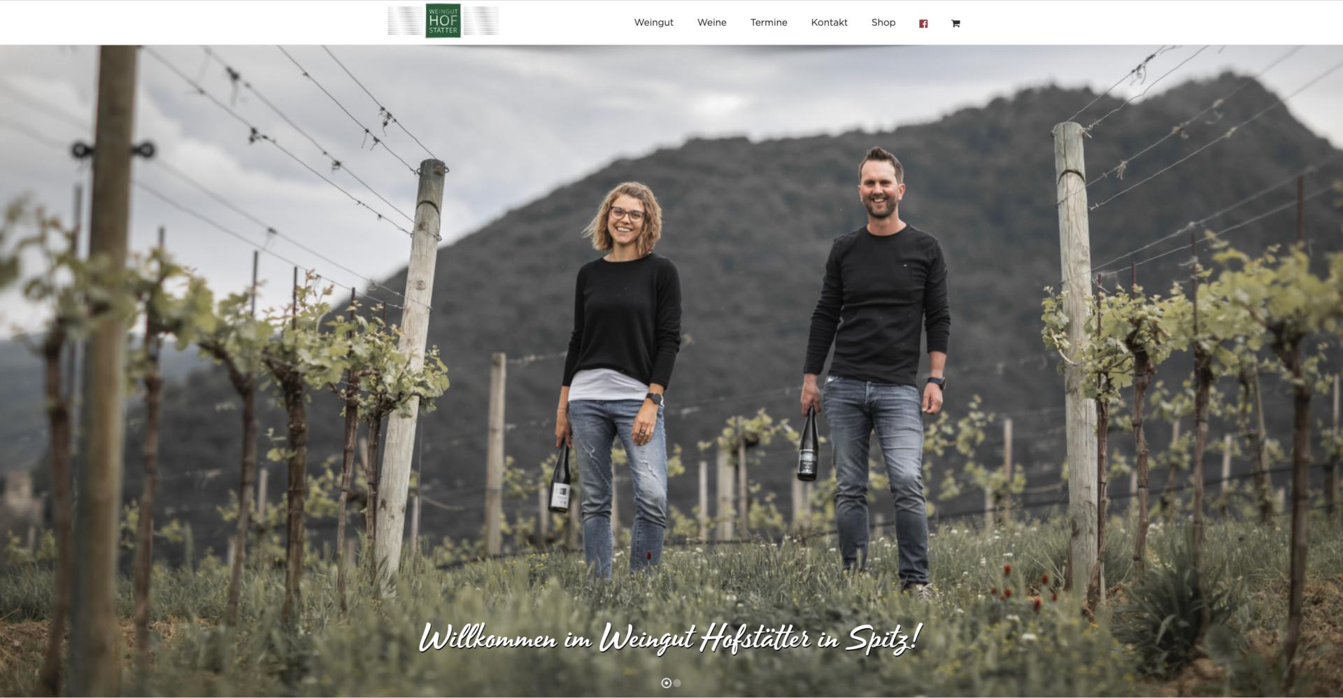 Webseite Desktop Hofstätter
